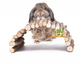 Kaninchenkäfig Zubehör