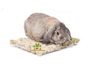 Kaninchen-Snacks
