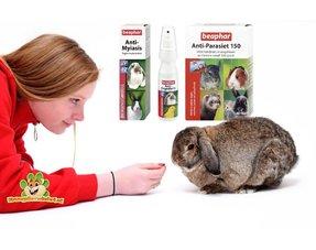 Kaninchengesundheit Rab