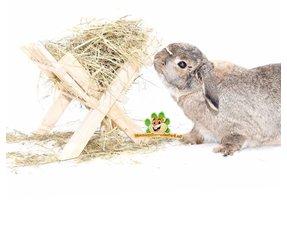 Kaninchen Heu