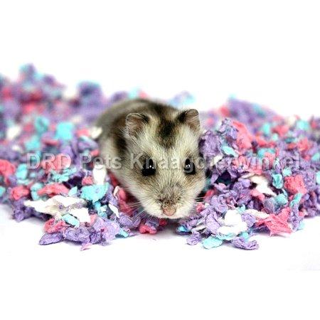 Chipsi Carefresh Confetti Bodendecker