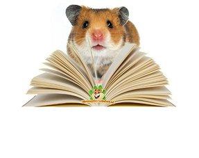 Hamster Bücher