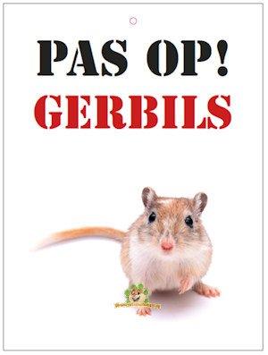 Knaagdierwinkel.nl Vorsicht! Rennmäuse