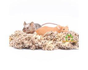 Mäuse Bodenabdeckung