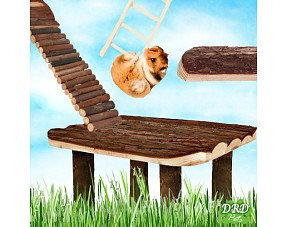 Hamster Regale & Leitern