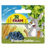 JR Farm Wholemeal Blueberry Biscuits