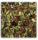 JR Farm Echinacea & Lucerne 100 grams