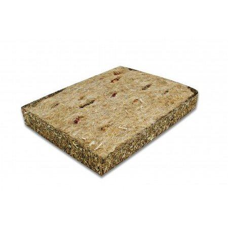 JR Farm Back to Instinct Active Carpet