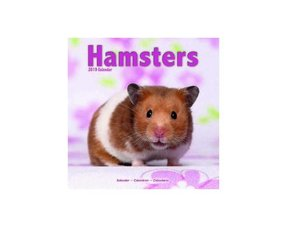 Hamster Gifts