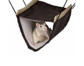 Ratten Hängematten