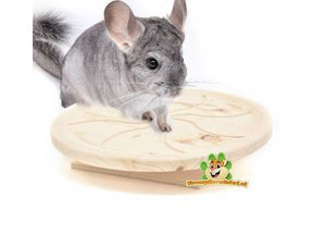 Chinchilla Walking wheels