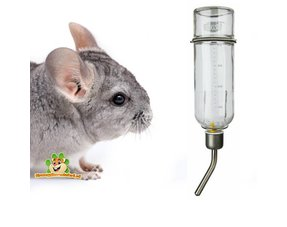Chinchilla Drinkflessen