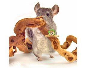 Chinchilla Spielzeug