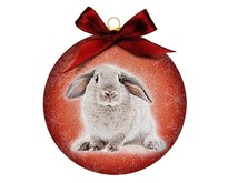 Ornament Frosted Rabbit