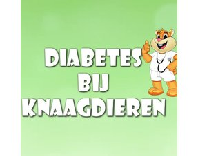 Knaagdier Diabetes