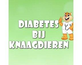 Nagetier-Diabetes