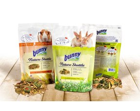 bunny nature rodent and rabbits feed and feed