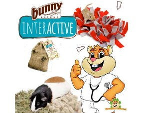 Bunny Nature Interactive