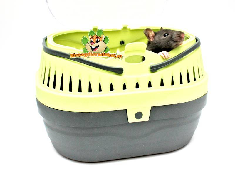rodent transport box and transport box