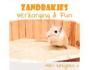 Sandboxes for rodents