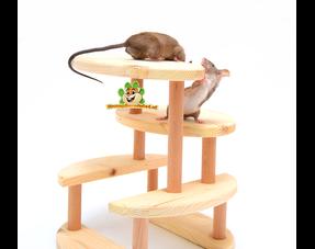 Muizen Speeltjes