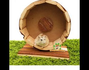 Hamster-Laufräder