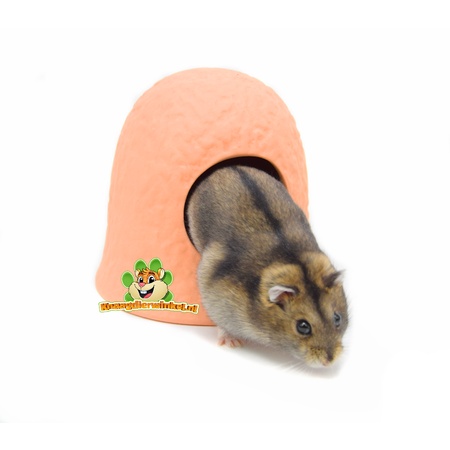 Elmato Zwerg-Hamster-Iglu aus Terrakotta