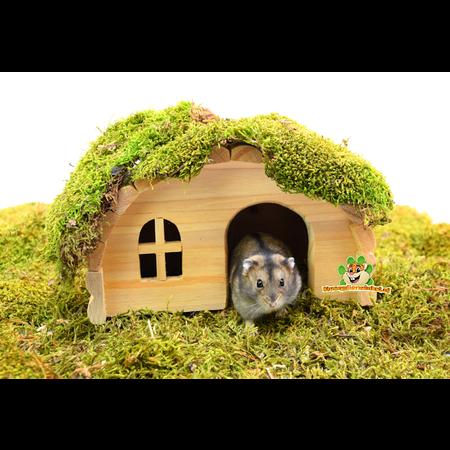 Trixie Iglo Huis Blanco 19 cm