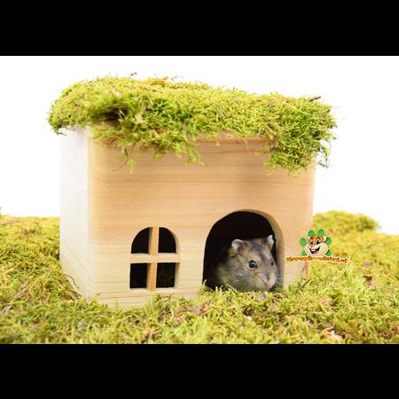Trixie Houten Blok Huisje 15 cm