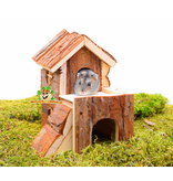 Trixie House Bjork 15 cm