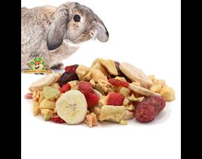 Kaninchen-Imbiss-Trockenfrüchte