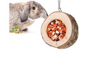Rabbit Snacks Active Toys