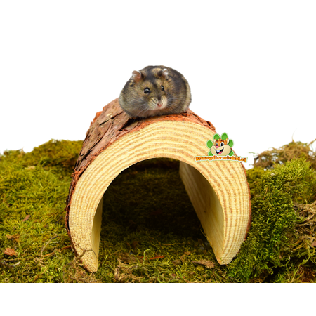 Trixie Wooden Tree Bark Tunnel 25 cm