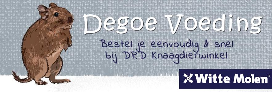 the food for degus, degu food and degu food
