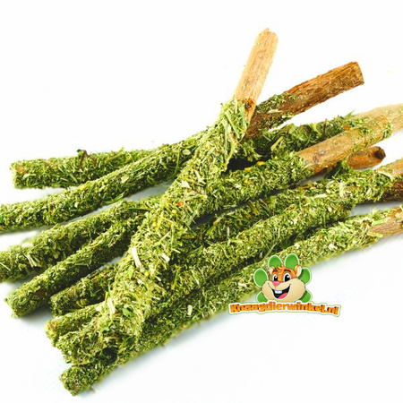 rodents parsley degu