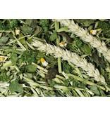 JR Farm Herb Garden Bucket 500 grams