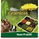 JR Farm Grainless Rodent Pralines