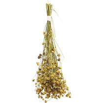 Linseed Flax 30 grams