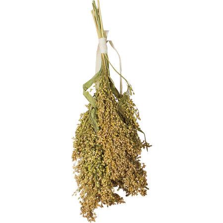JR Farm Feather millet 100 grams