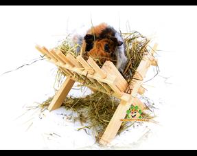 Guinea pig hay racks