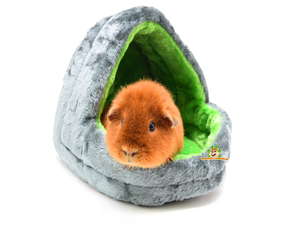 Guinea Pig Cushions and Baskets