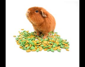 guinea pig food and guinea pig food