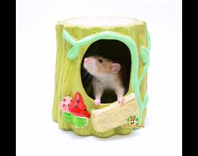 Rat Houses