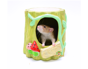 Rats Houses