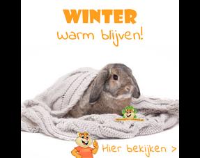 knaagdier warm tijdens de winter