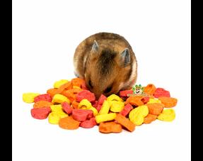 Hamster Snacks
