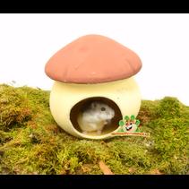 Terrakotta-Pilz-Häuschen 17 cm