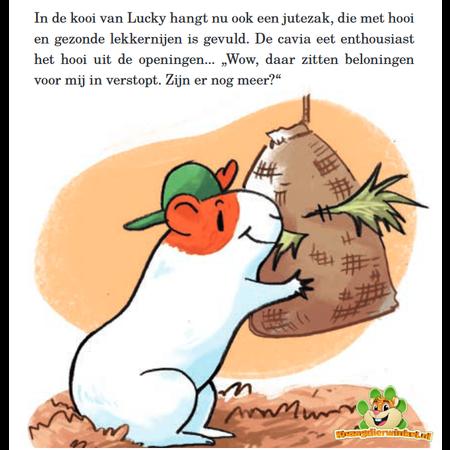 Bunny Nature Hooi Active Snack Favoriete Groenten