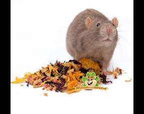 Rattenkräuter und Samen