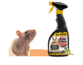 Ratten Verzorging